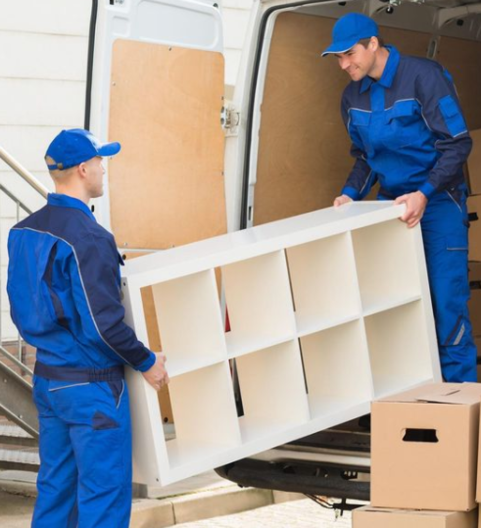 MAGNATE RESOURCES LIMITED Removal Services